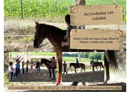 Actividades con cabalos