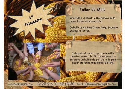 Taller do millo