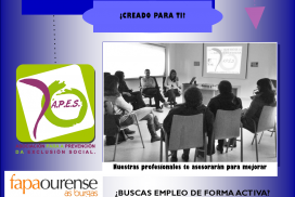 Programa de empleo APES